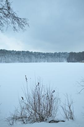 Het meer achter ons ergens tussen begin november en eind maart.